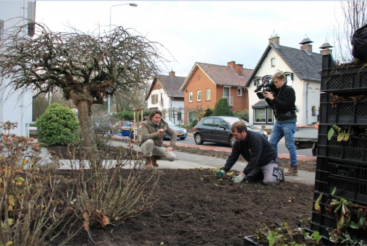 In navolging van de herinrichting van de straat kozen ook particuliere tuinen voor een GreentoColour concept.