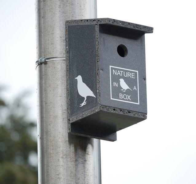 Vogels zijn een natuurlijke vijand van emelten.