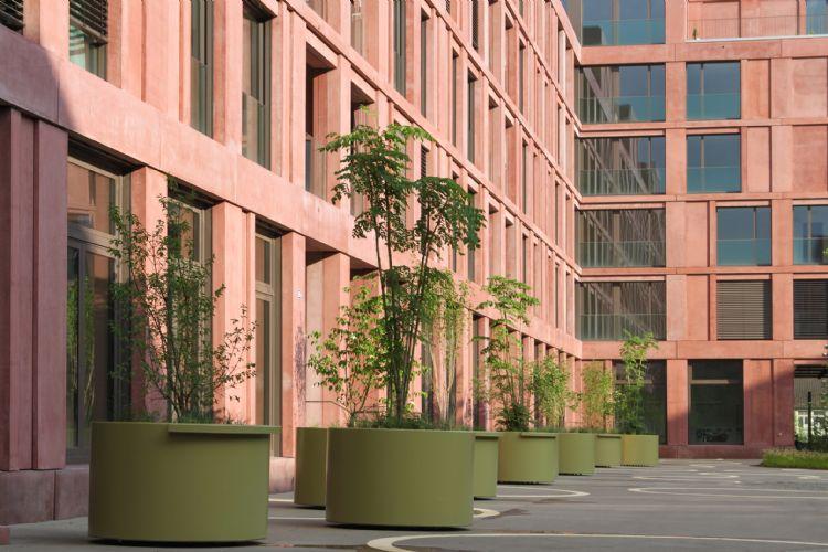 project Appartmentencomplex ROY in Winterthur, Zwitserland: pas aangeplante spillen van de Aralia.