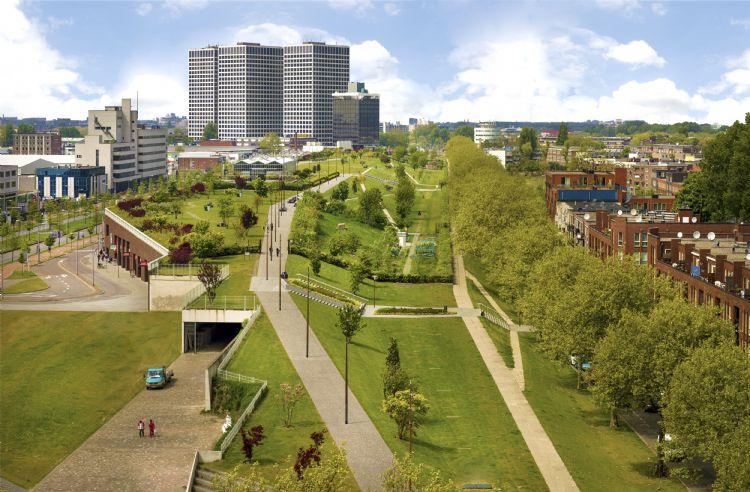 Dakpark in Rotterdam, geïnstalleerd met Nophadrain Groendaksystemen