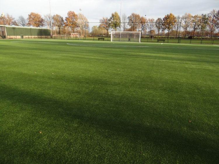 Foto van een bestaand non-infill veld bij WEC uit Meierijstad.