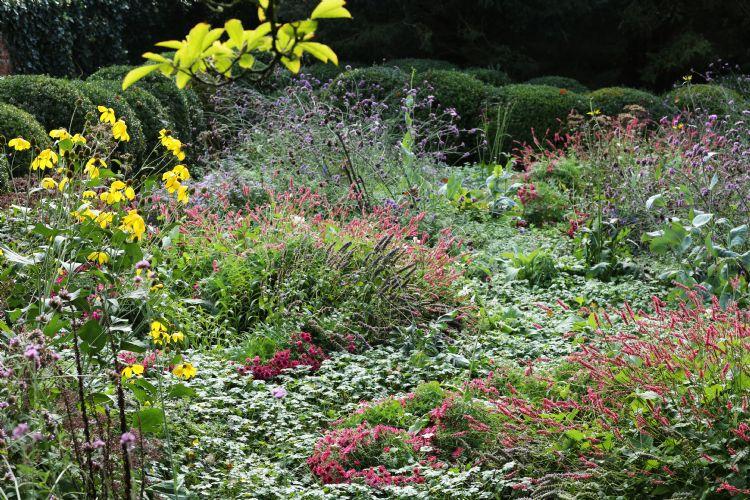 Bekend om de vakbeplanting, maar Greentocolour is ook geschikt voor beplanting met een natuurlijke uitstraling