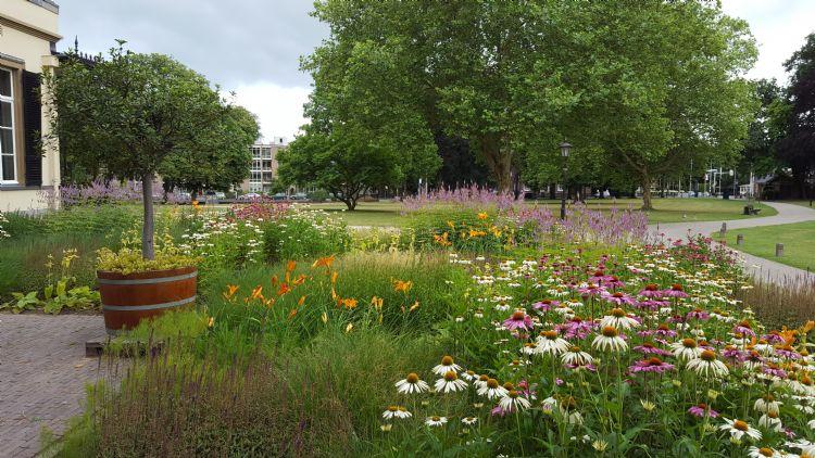 Fleur Dansante zorgt voor kleur op landgoed Bronbeek in Arnhem