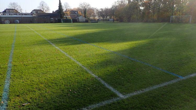 Gezonde sportveldgrassen hebben ook in najaar en winter enkele uren zonlicht nodig.