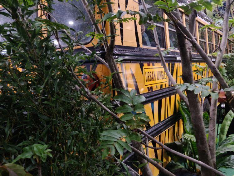 De safaribus van boomkwekerij Ebben op de Vakbeurs Openbare Ruimte