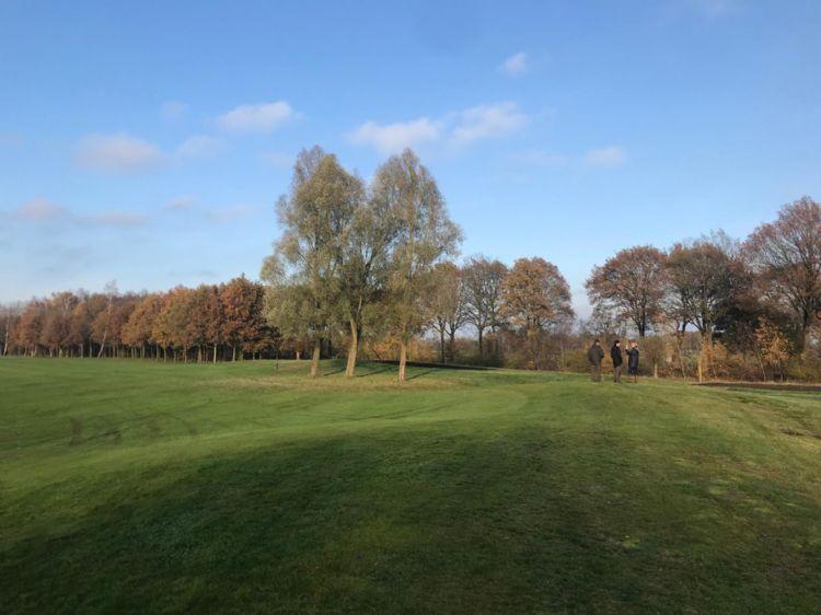 Bomen bij Golfclub De Gelpenberg