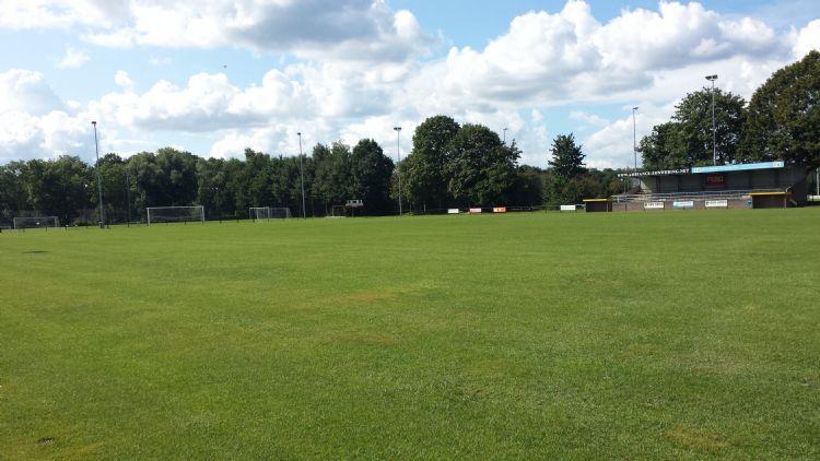 Een van de velden die Scholman in beheer heeft.