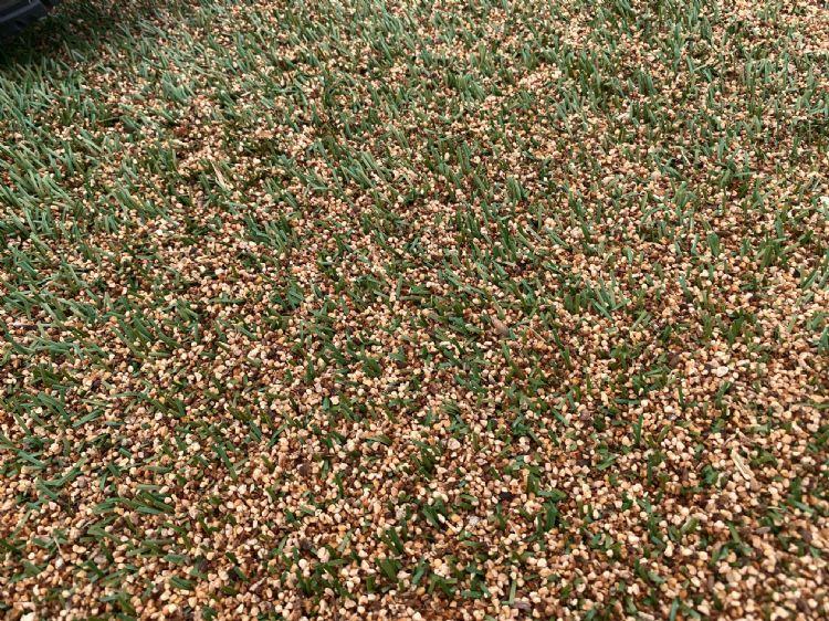Puremix, de mix van olijfpitten en kurk